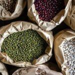 Hvorfor spise vegetariske proteiner? | Biogan